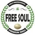 Free Soul
